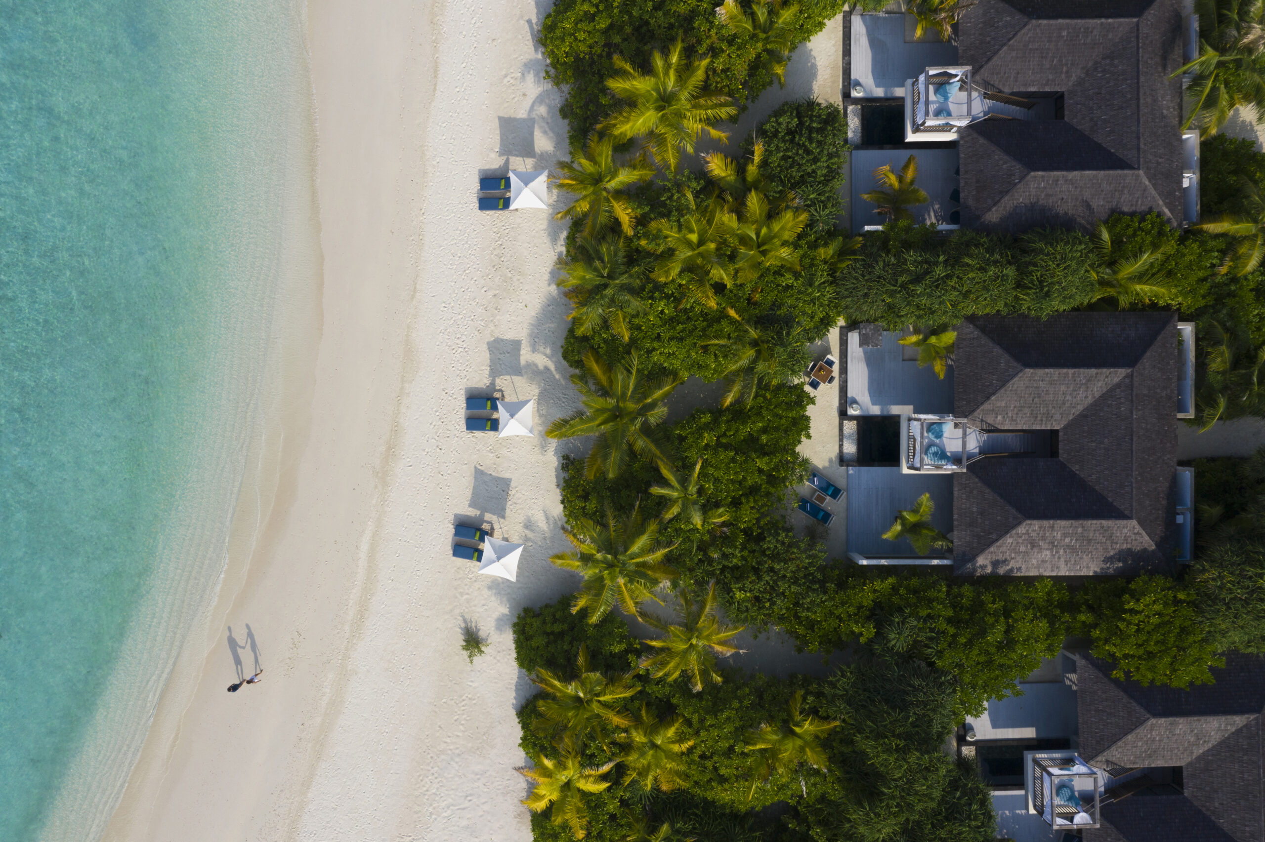 23 ноября вебинар с Mövenpick Resort Kuredivaru Maldives!